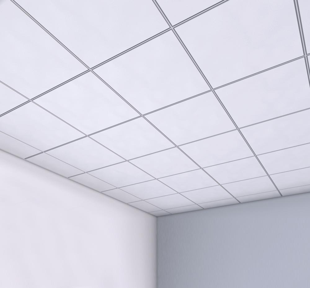 Bioguard ceiling tiles