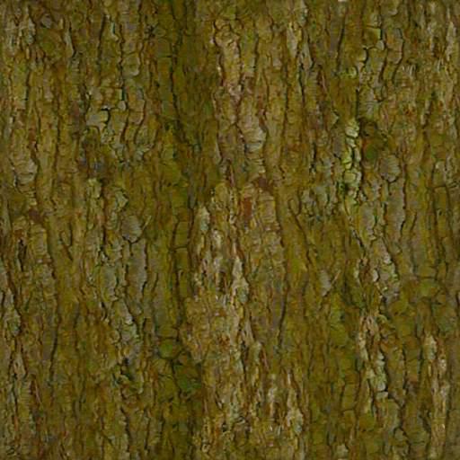 Bark 14