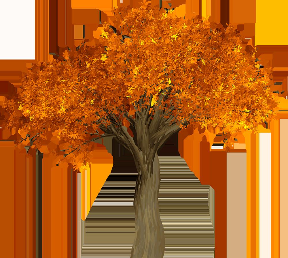 Image - Entourage - Autumn Tree 1