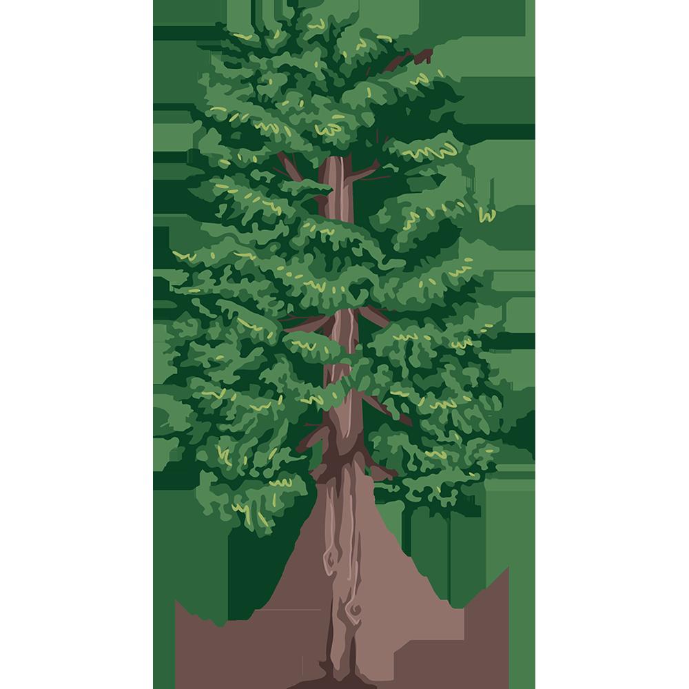 Image - Entourage - Drawing Tree 1