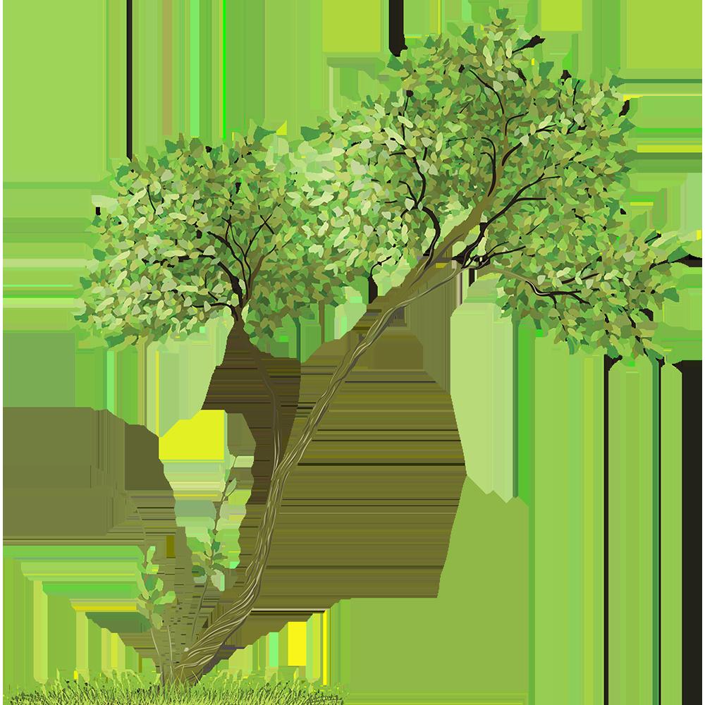 Image - Entourage - Drawing Tree 5