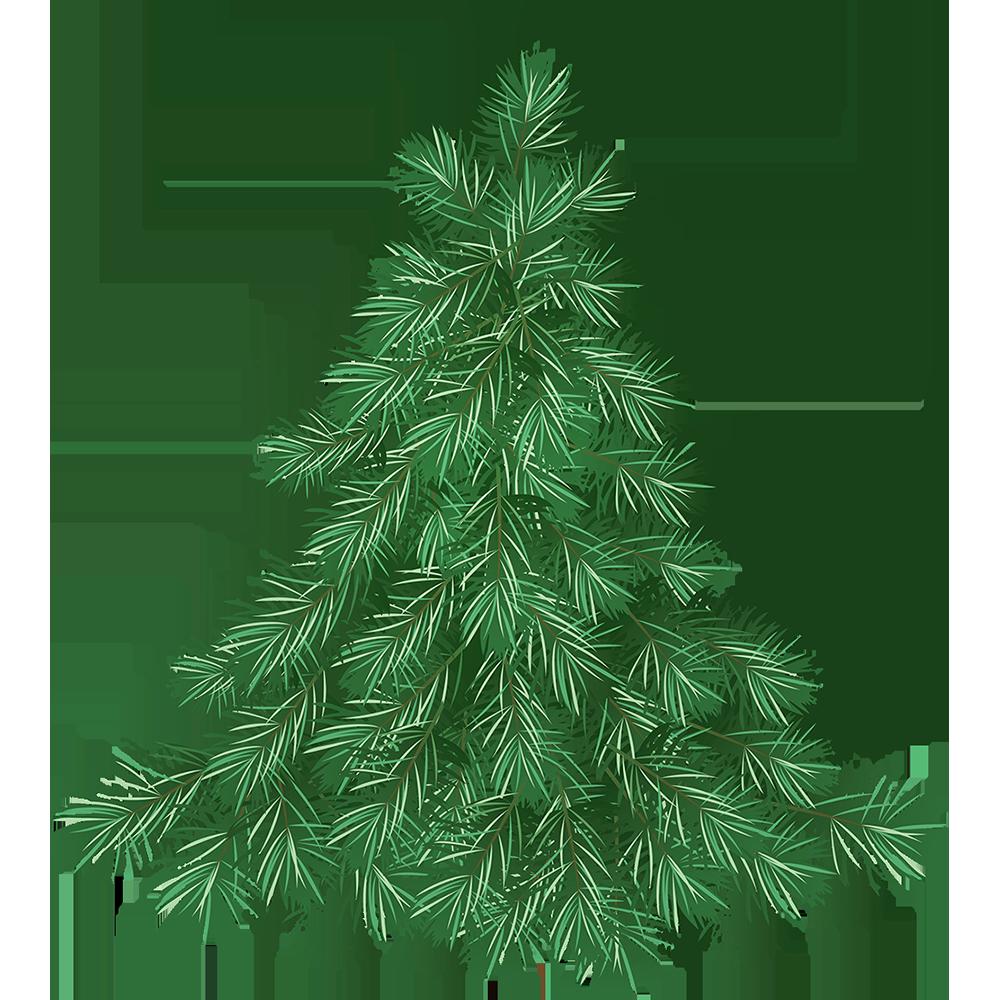 Image - Entourage - Drawing Tree 9