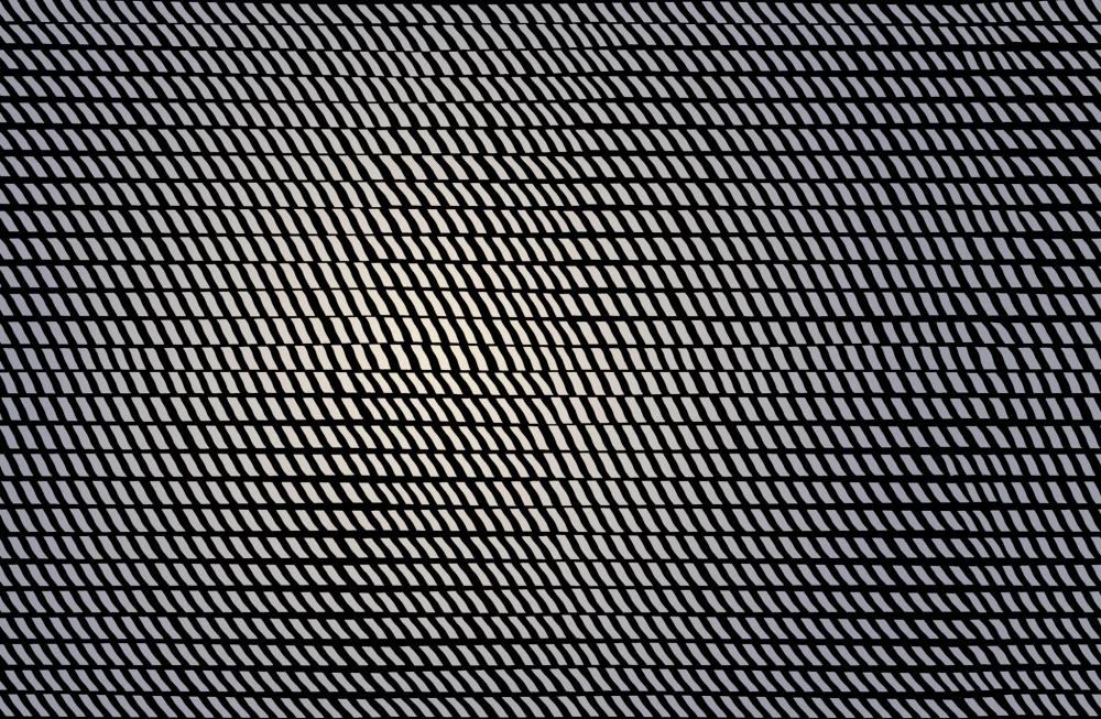 Wallpaper Fragments ADN Modele