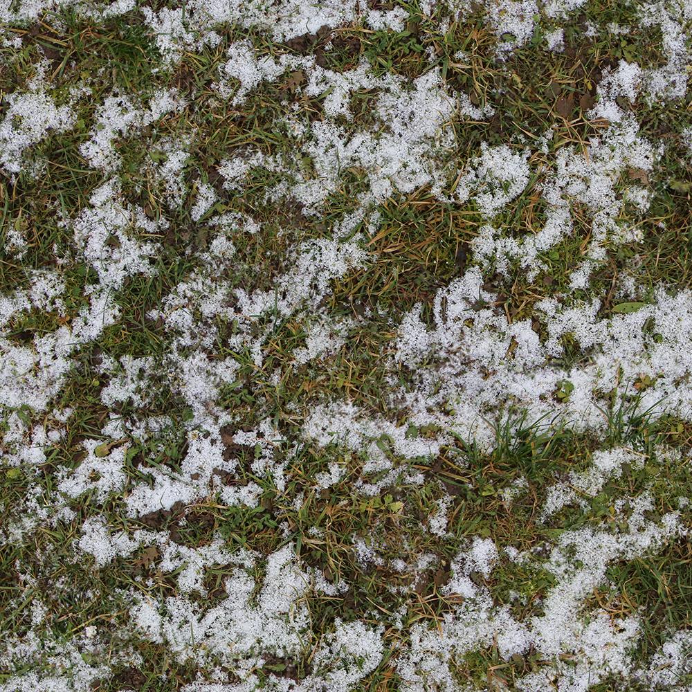 Grass Snow 2