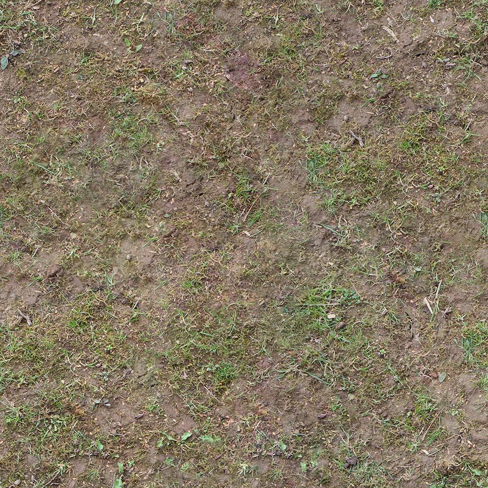 Ground Grass