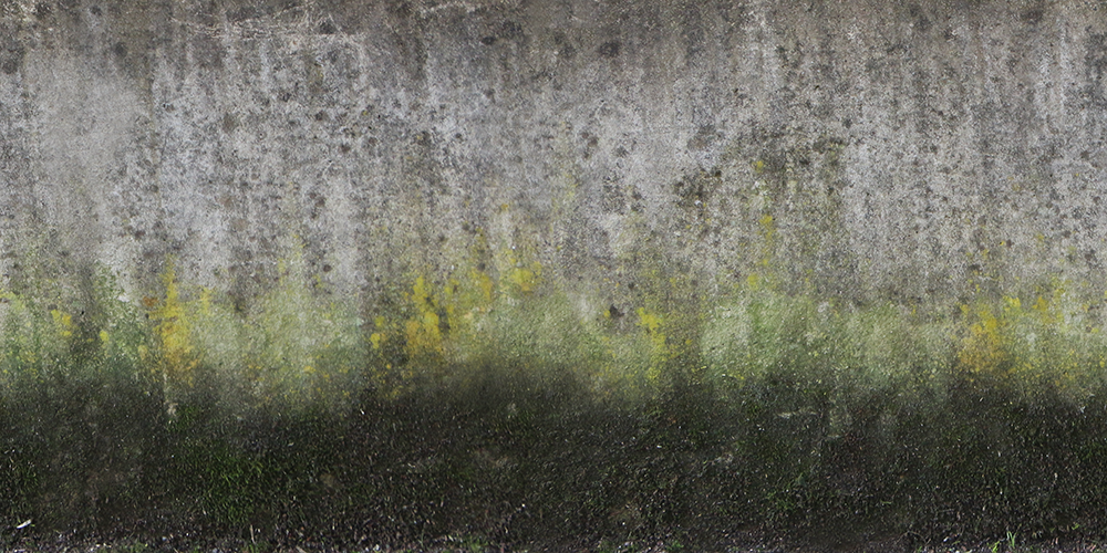 Wall Layered