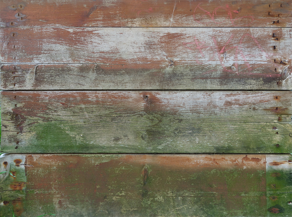 Wood Surface Texture 29