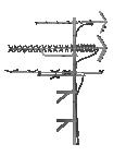 antennna 0f roof