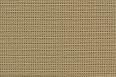 Carpet 05