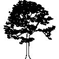 tree 122
