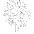 Tree 306