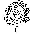 Tree 310