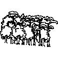 Tree 335