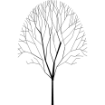 Tree 342