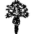 Tree 369