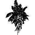 Tree 383
