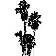 Tree 387