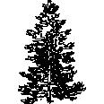 tree 390