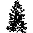 tree 391