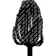 Tree 464