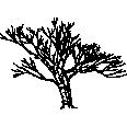 Tree 487