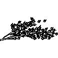 bush 14