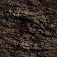 bark 02