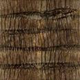 bark 09