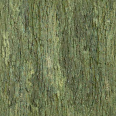 bark 13
