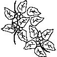 Plant 41