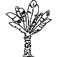 Tree 523