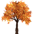 cutout autumn tree 3