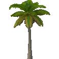 Image - Entourage - Palm Tree 1