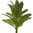image - entourage - palm tree 21