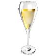 sparkling wine glass tulip