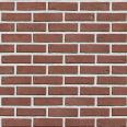brique amazone