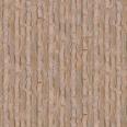 Tree Trunk Texture Oak Stylized
