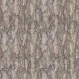 Bark 9