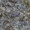 rock 38 mossy