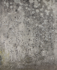 Concrete Wall 6