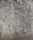 concrete wall 6
