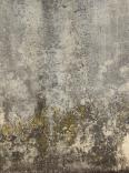 concrete dirty 2