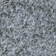 Grass Snow