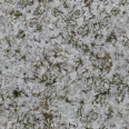 Grass Snow 3
