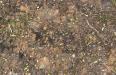 ground dirt raw 2