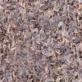 ground leaves 4