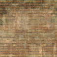 Wood Surface Texture 35