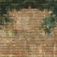 wood surface texture 36