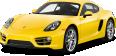Porsche 216
