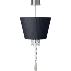 Torch Ceiling Lamp Black lampshade